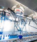 ABB automazione pasticceria
